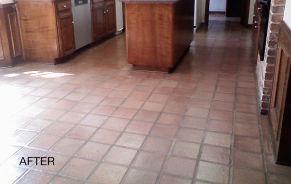 Saltillo Stain Removal